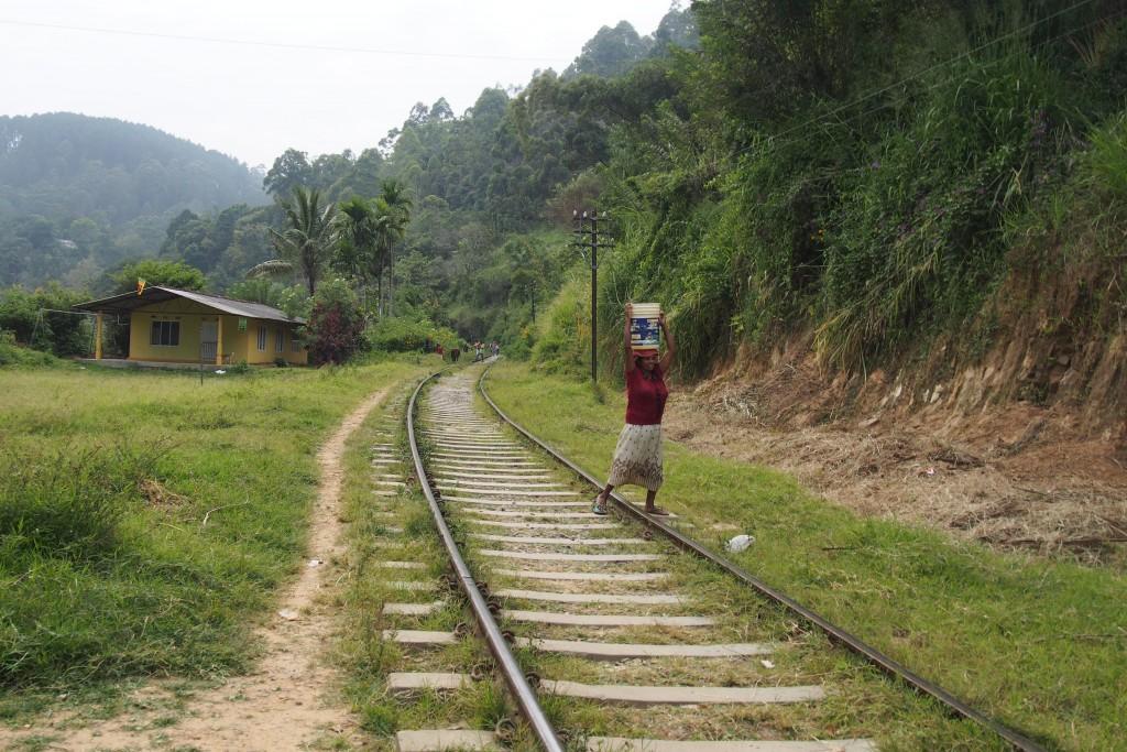 Prendre le train au Sri Lanka : voie ferrée