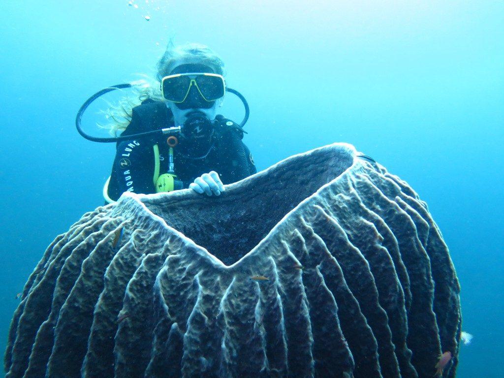 Faire de la plongée bali