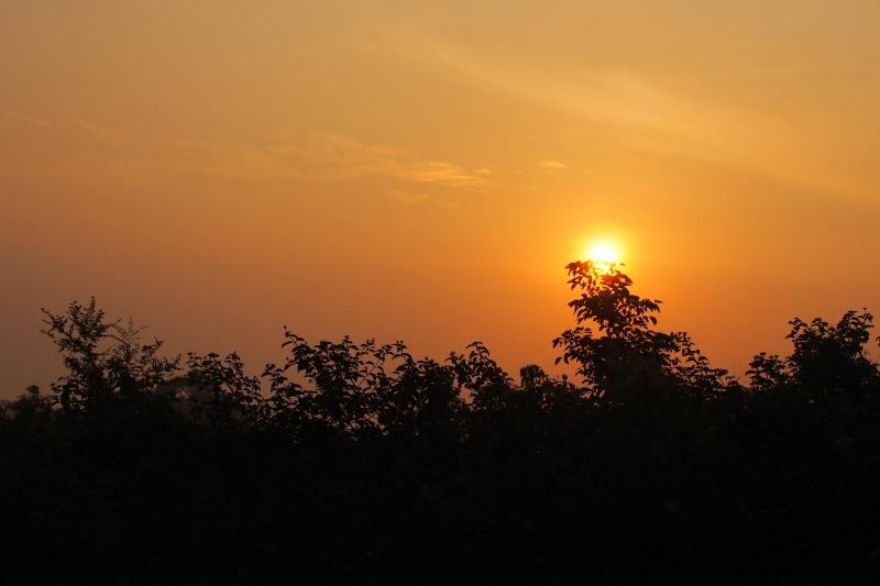 Lever de soleil sur le safari