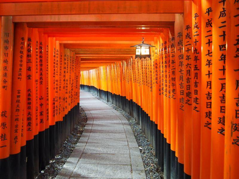 Torii rouges à Kyoto