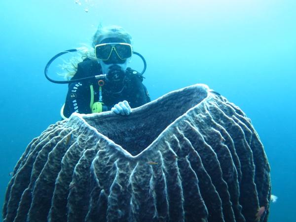 Top 10 des choses à faire à Bali : faire de la plongée