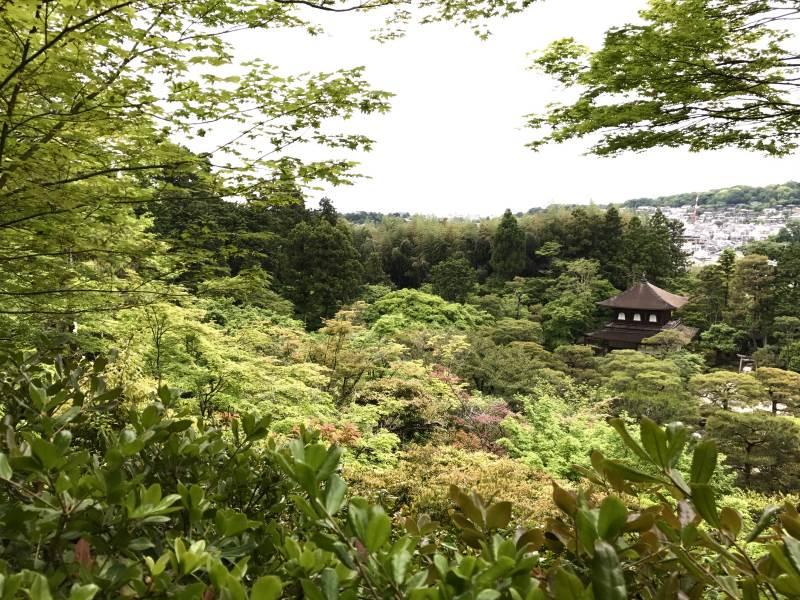 Les plus beaux temples de Kyoto : le pavillon d'argent
