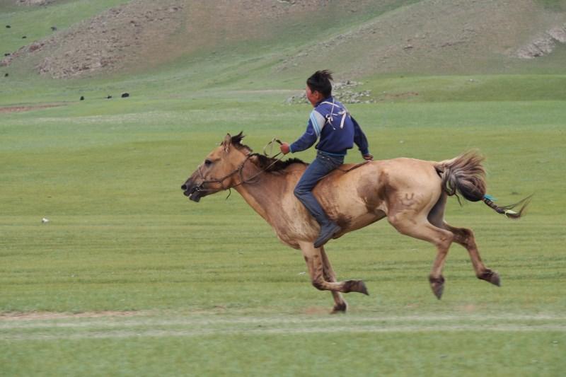 Tu sais que tu es en Mongolie quand : tu vois des courses de chevaux