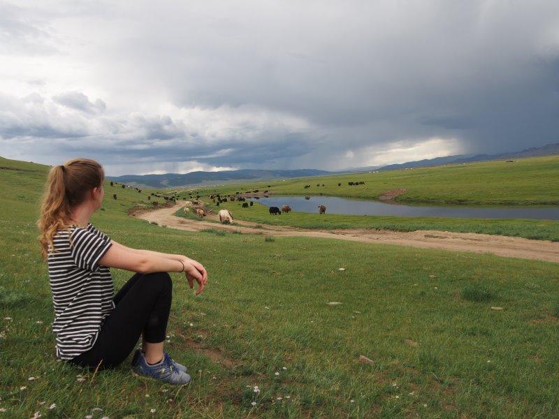 Tu sais que tu es en Mongolie quand : tu veilles sur ton troupeau