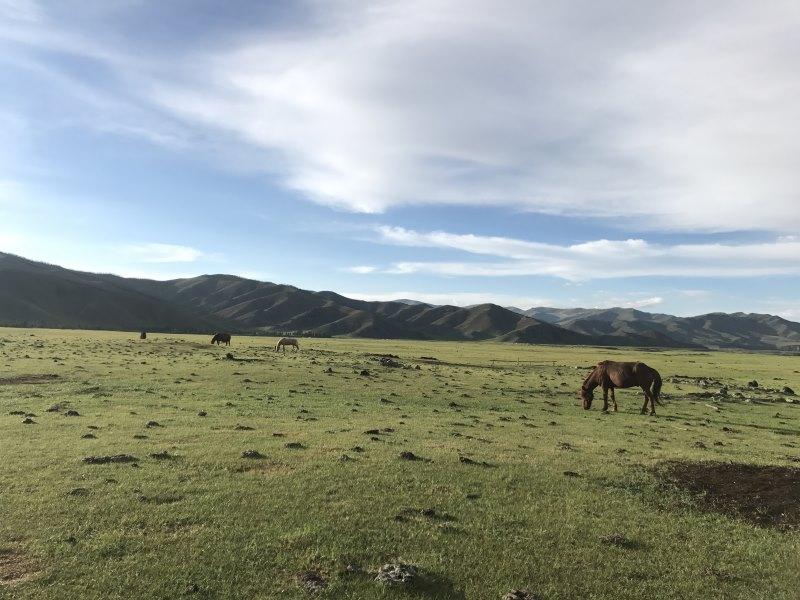 Tu sais que tu es en Mongolie quand : tu vois des paysages de fous