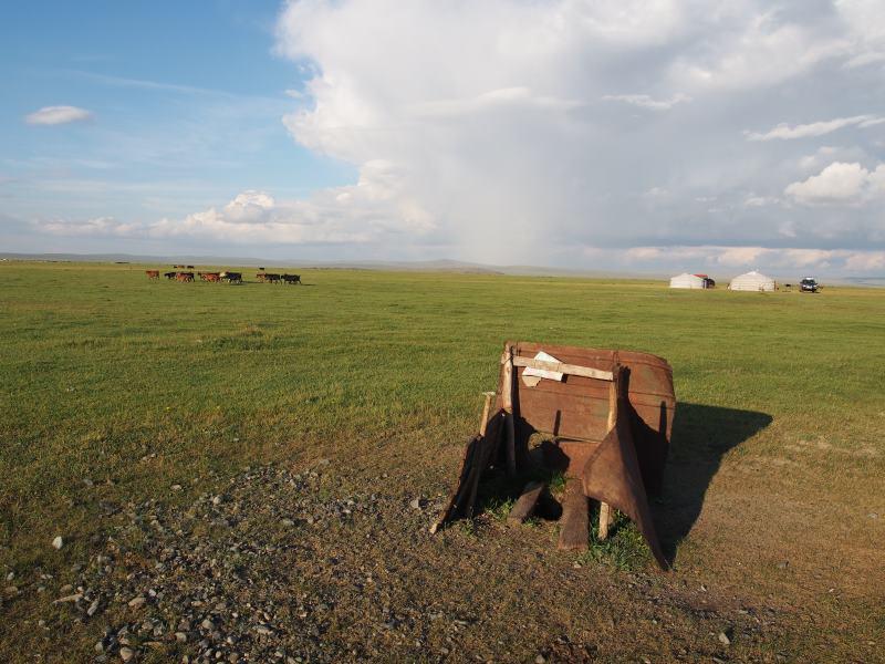 Tu sais que tu es en Mongolie quand : aller au toilettes est une mission commando !