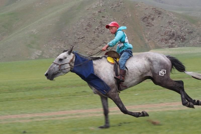 Carnet de voyage en Mongolie : course de chevaux