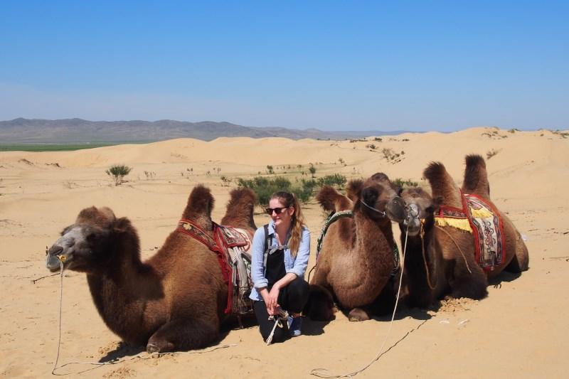 Carnet de voyage en Mongolie : chameau