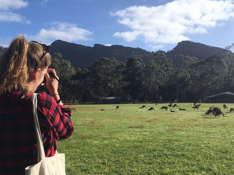 Top 8 des choses à faire autour de Melbourne : Flo et les kangourous