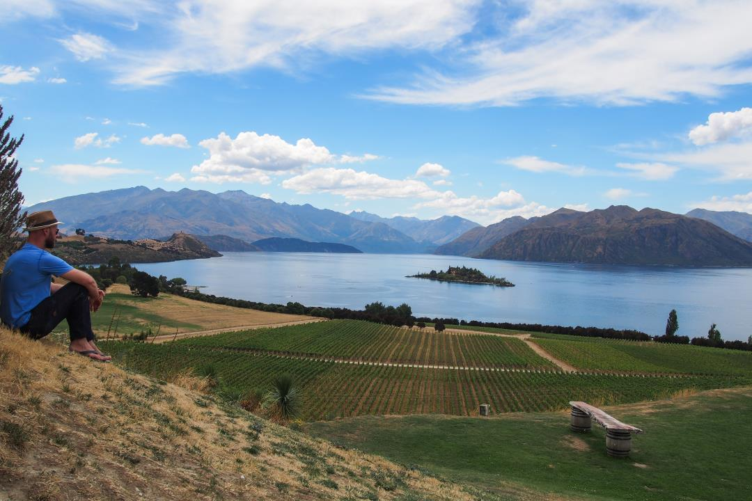 2 semaines en Nouvelle-Zélande : vignobles de Wanaka